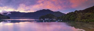 Ngakuta Bay, Queen Charlotte Sound, Marlborough Sounds, South Island, New Zealand-Doug Pearson-Photographic Print