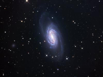 Ngc 2903, Spiral Galaxy in Leo-Robert Gendler-Photographic Print