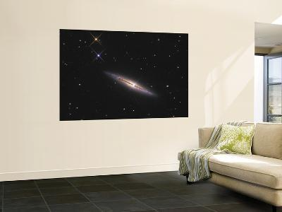 NGC 4013 is an Edge-On Unbarred Spiral Galaxy in the Constellation Ursa Major--Wall Mural