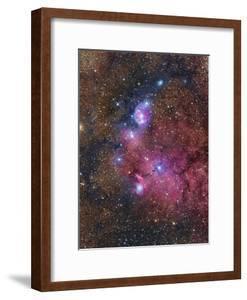 Ngc 6559 Emission and Reflection Nebulosity in Sagittarius