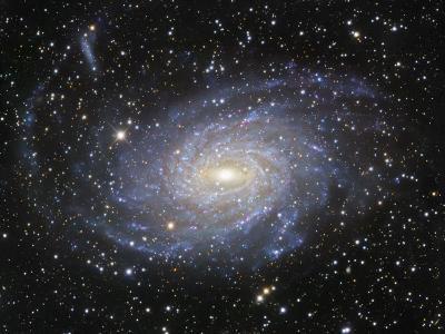Ngc 6744 Spiral Galaxy in Pavo-Robert Gendler-Photographic Print