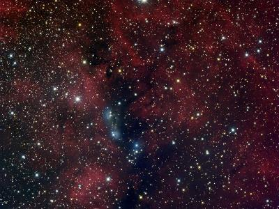 NGC 6914, Reflection Nebula in Cygnus-Stocktrek Images-Photographic Print