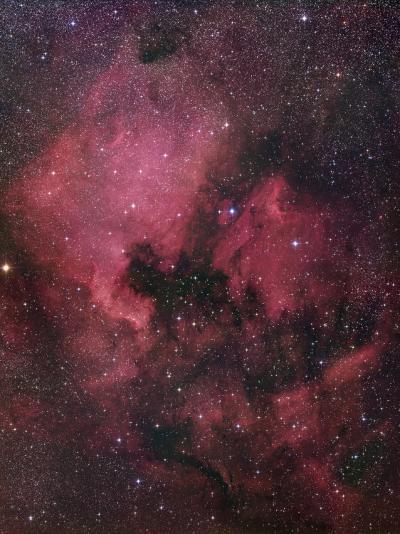 Ngc 7000, the North American Nebula in Cygnus-Robert Gendler-Photographic Print