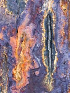 Close Up of Slate, Easdale, Scotland, UK by Niall Benvie