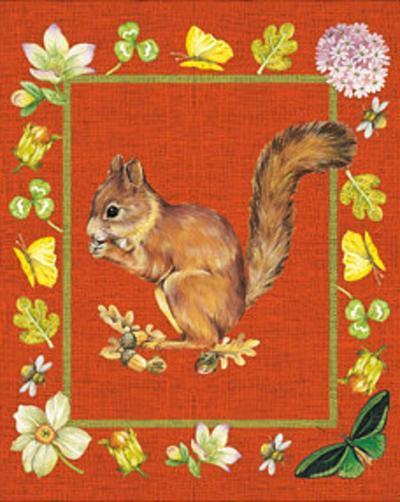 Nice Animals Chipmunks--Art Print