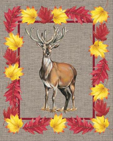 https://imgc.artprintimages.com/img/print/nice-animals-deer_u-l-f5b8qv0.jpg?p=0
