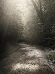 Back Country Road by Nicholas Bell