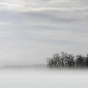 Lake of Fog by Nicholas Bell