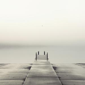 Pier and Seagull by Nicholas Bell