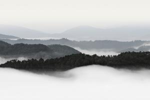 Rolling Fog, Smoky Mountains No. 2 by Nicholas Bell