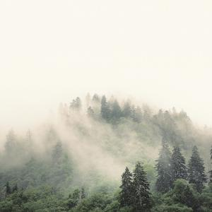 Smoky Mountains by Nicholas Bell
