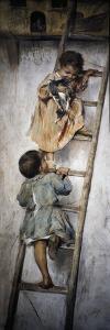 Nest by Nicholas Biondi