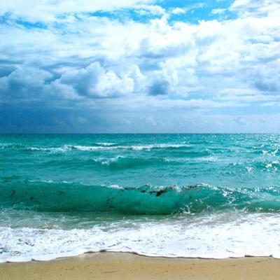 Teal Surf II by Nicholas Biscardi