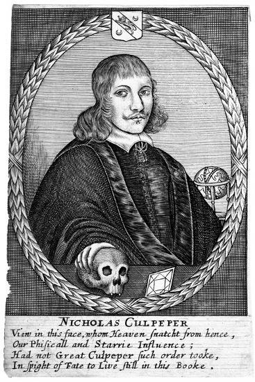 Nicholas Culpepper (1616-5)--Giclee Print