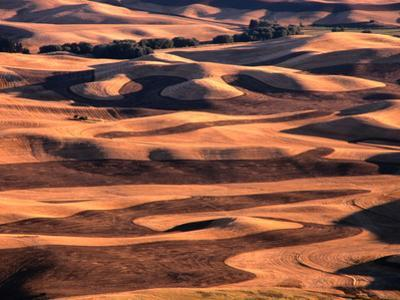 Aerial View of Wheat Field in Palouse Region, Palouse, USA