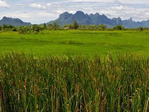 Peaks in Khao Sam Roi Yot National Park across Fields by Nicholas Reuss