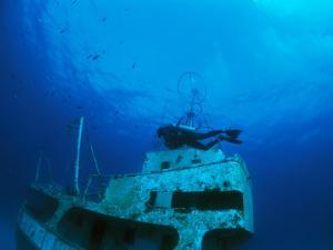 A Diver Exploring a Shipwreck with Fish Nearby by Nick Caloyianis