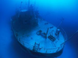 Overhead View of a Shipwreck on the Seafloor by Nick Caloyianis