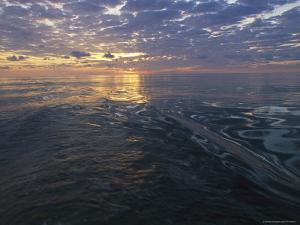 Sunrise is Reflected on the Wake of a Boat by Nick Caloyianis