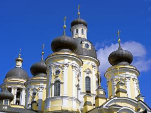 Russia, St Petersburg; Cupolas of the Vladimirsky Church by Nick Laing