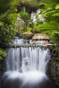 Costa Rica, Alajuela, La Fortuna. Hot Springs at the Tabacon Grand Spa Thermal Resort by Nick Ledger