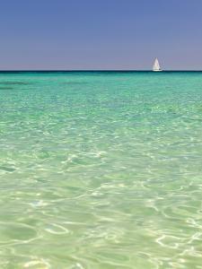 Italy, Sardinia, Olbia-Tempo, Berchidda, a Sailing Boat Out at Sea by Nick Ledger