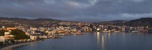 Panorama of Wellington City and Harbour by Nick Servian