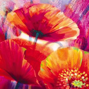 Amid Poppies I by Nick Vivian