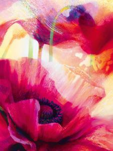 Amid Poppies III by Nick Vivian