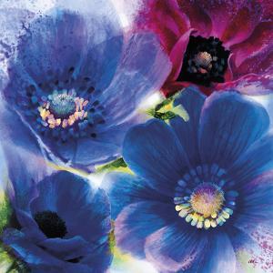 Floral Intensity I by Nick Vivian