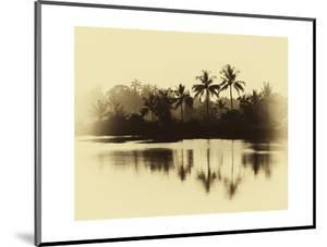 Horizontal Vintage Sepia Palms Reflections on Lake Ba by Nickolay Loginov