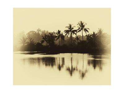 Horizontal Vintage Sepia Palms Reflections on Lake Ba