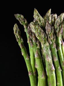 Asparagus Bundle (Asparagus Officinalis), Italy by Nico Tondini