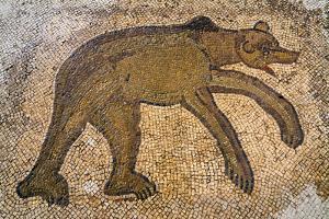 Byzantine bear mosaic, the Theater, Roman ruins of Bulla Regia, Tunisia by Nico Tondini