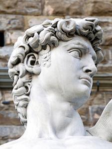 David of Michelangelo, Piazza Della Signoria, Florence, UNESCO World Heritage Site, Tuscany, Italy by Nico Tondini