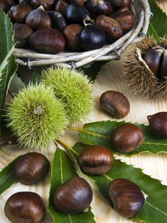 Sweet Chestnuts by Nico Tondini