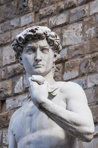 The David, by Michelangelo, Palazzo Vecchio by Nico Tondini