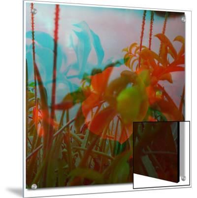 Vegetaux 19, 2012