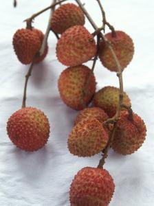 Lychees by Nicolas Leser