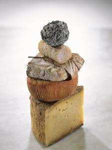 Still Life with Various Types of French Cheese by Nicolas Leser