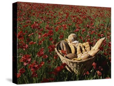 Basket of Bread in a Poppy Field in Provence