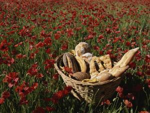 Basket of Bread in a Poppy Field in Provence by Nicole Duplaix