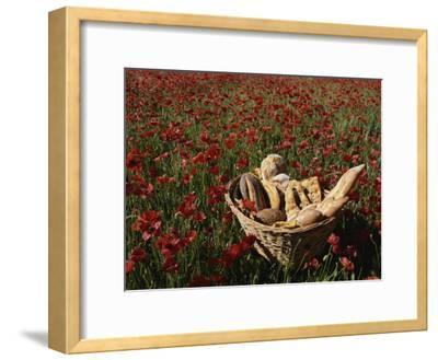 Basket of Bread in a Poppy Field in Provence