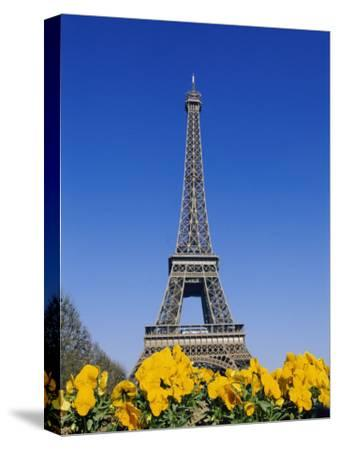Eiffel Tower and Yellow Pansies