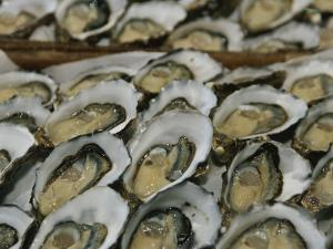 Oysters on the Half-Shell Glisten with Briny Sweetness by Nicole Duplaix