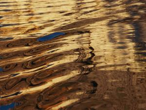 Reflections Glisten in Flowing Water by Nicole Duplaix