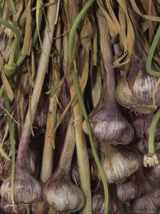Shallots at a Market in Provence by Nicole Duplaix