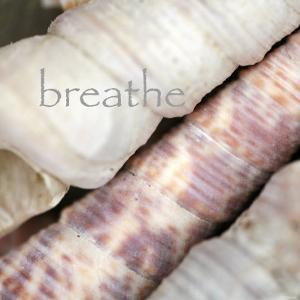 Breathe by Nicole Katano