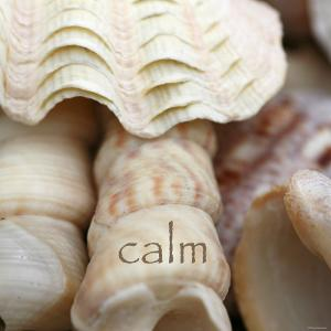 Calm by Nicole Katano