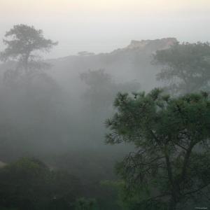 Canyon Mist III by Nicole Katano